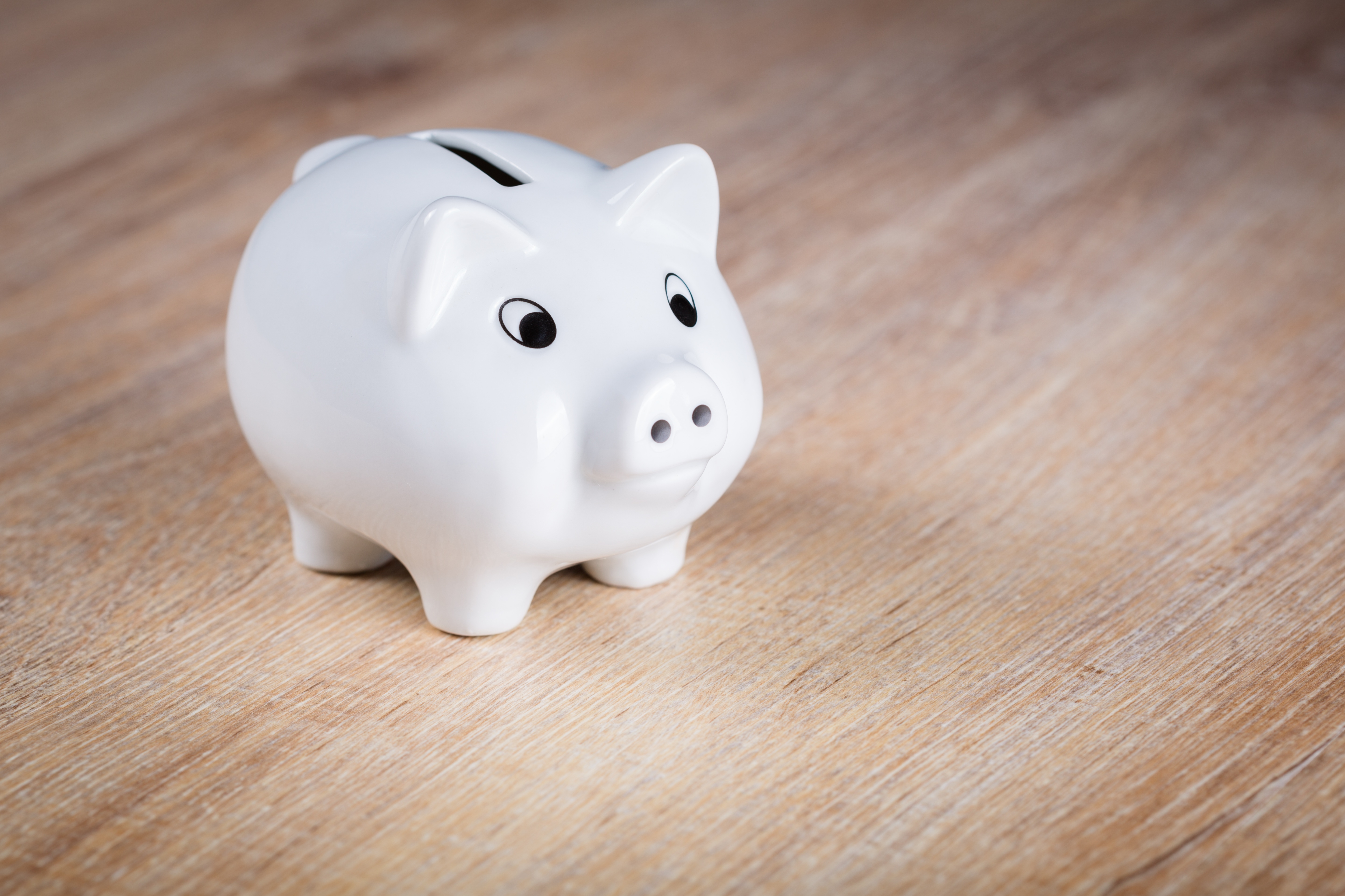 Savings Money Economy Piggy Bank New Year's Resolution LocalBini BiniBlog TIps