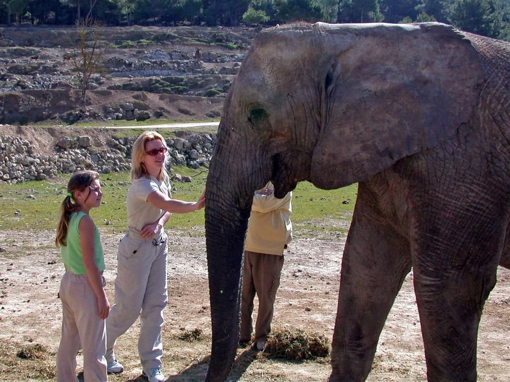 Atiana Safari in Spain Elephant Nature Adventure Holidays Alicante Local BiniBlog Travel Lifestyle Experience