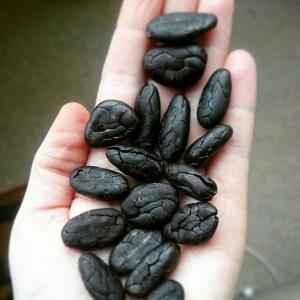 Severine Köhn Manufaktur Bamert Chocolate