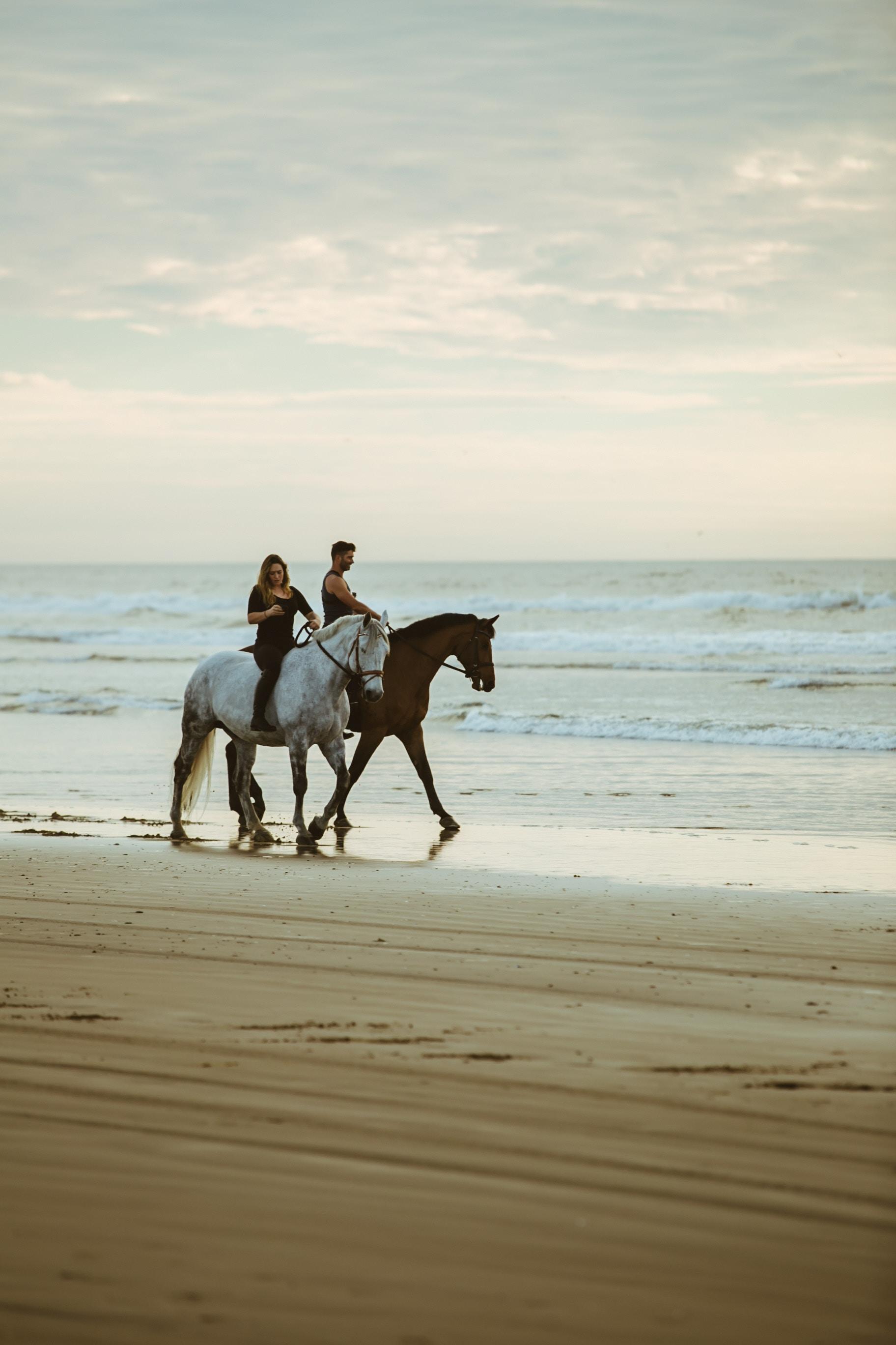 chateaux de bagnols horses beach horseback