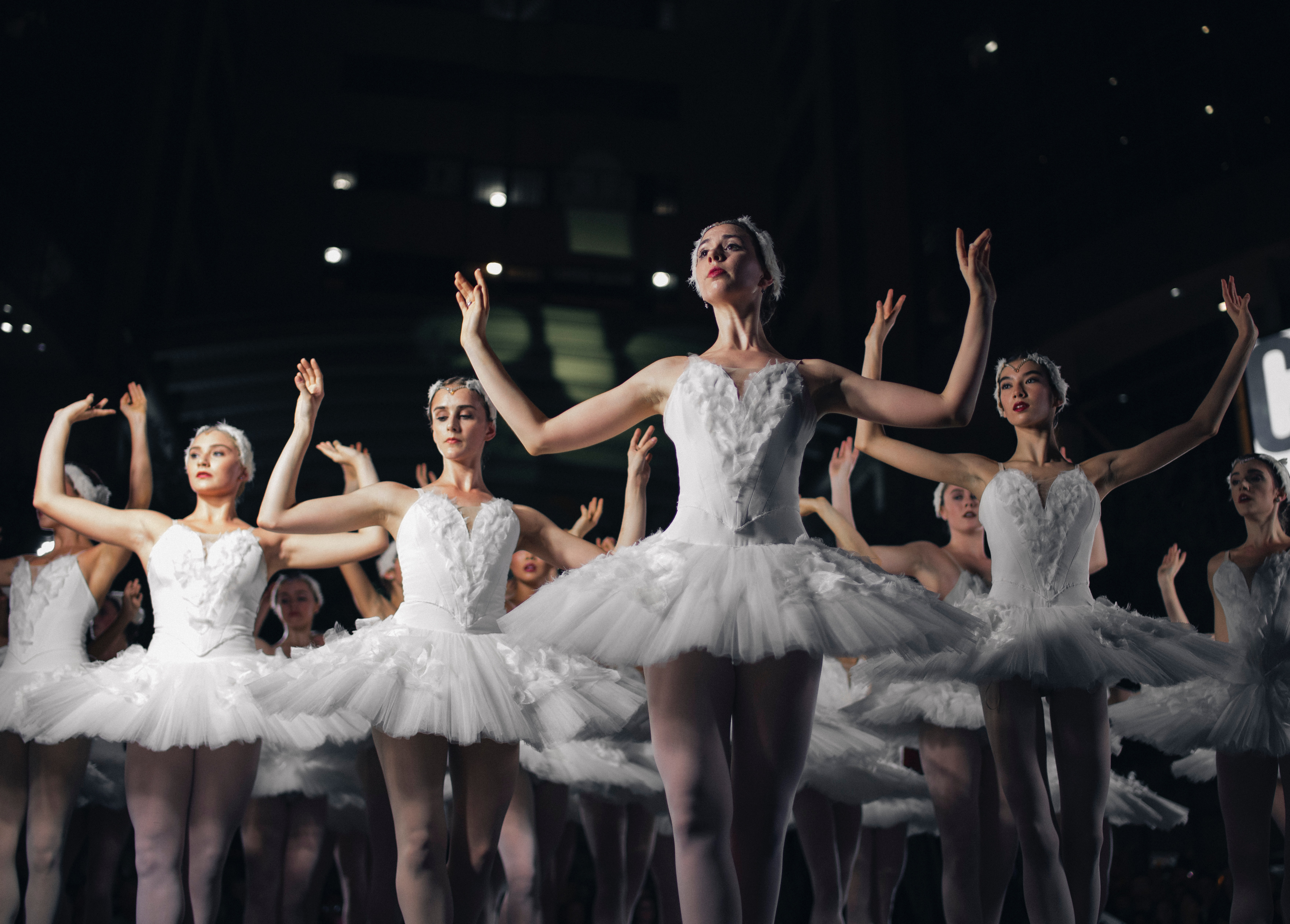 swan lake virtual ballet performance stage culture experience home local authentic localbini biniblog travel