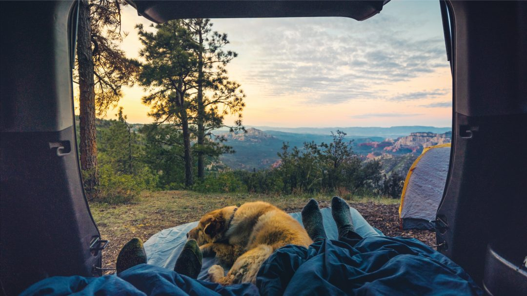 staycation holiday ideas alternative unique nature camping road trip couple dog car adventure couple experience localbini biniblog travel blog scenery nature travel traveller