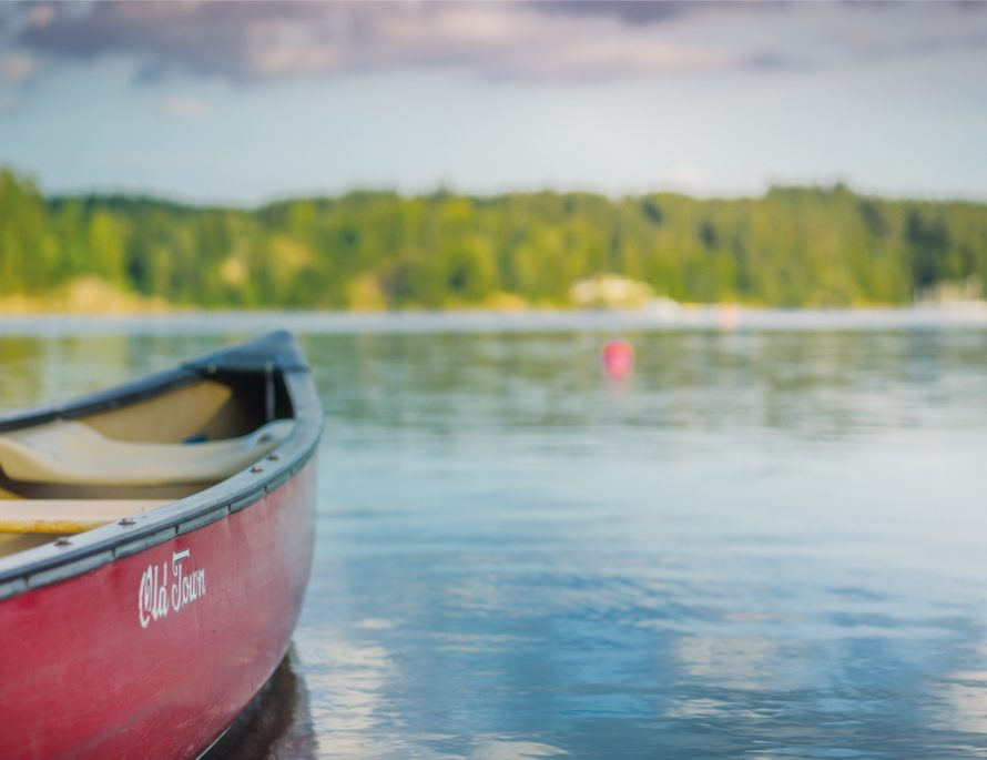 lake, Europe, canoe, Switzerland, water, calm, travel, travel blog, travel ideas, forest, green