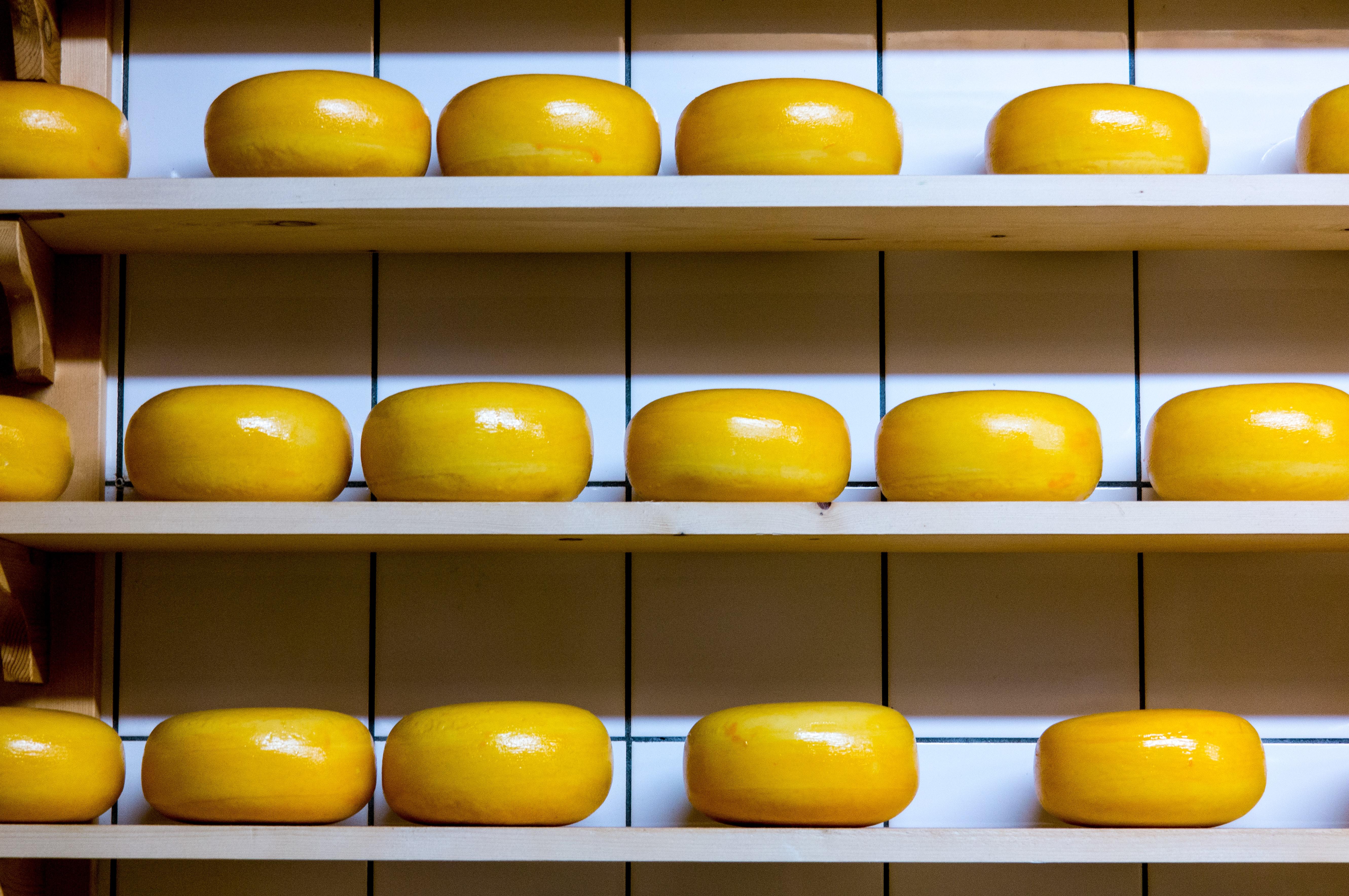 Appenzeller Cheese Appenzeller CheeseRemove term: Burgdorf Cheese cheese factory Cheese Route Cheese cheese-making Dinner Emmental experience term: Fondue FondueRemove term: Fondue hike Fondue hikeRemove fondueland Gruyère La Maison du Gruyère museum Pringy-Gruyères Pringy-Gruyères Raclette St Gallen Switzerland