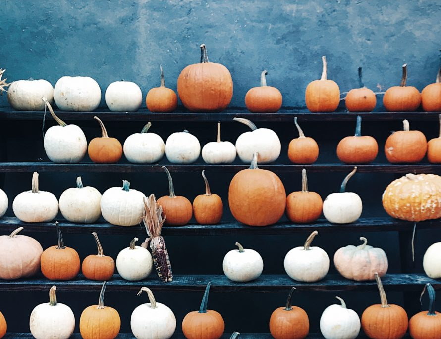 Europe, Experience, Halloween, Pumpkin, Festival, Spooky, Autumn, Travel, LocalBini, BiniBlog